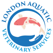 London Aquatic Veterinary Services